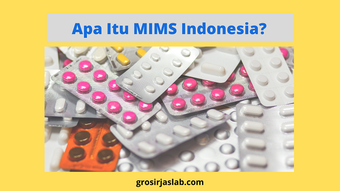 apa itu mims indonesia